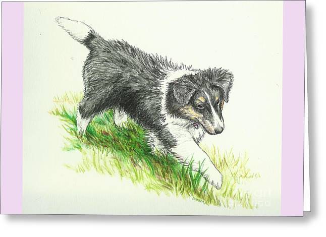Puppies Drawings Greeting Cards - Miss Mary Greeting Card by Sue Bonnar