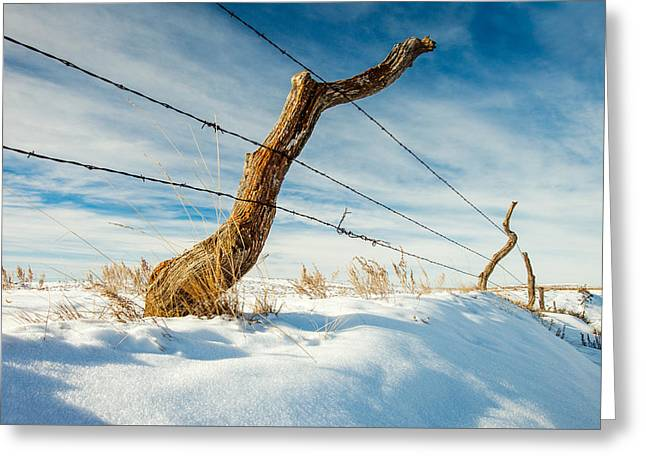 Crooked Fence Greeting Cards - Misshapen Greeting Card by Todd Klassy