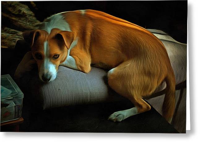 Dogs Digital Art Greeting Cards - Missing Dad Greeting Card by Dorothy Berry-Lound