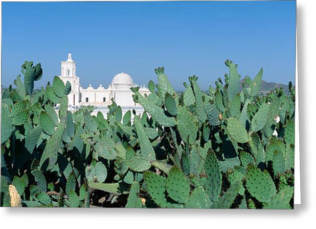 Panoramic Landscape Greeting Cards - Mission San Xavier Del Bac Greeting Card by Panoramic Images