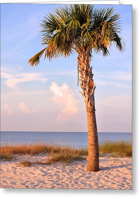 Biloxi Greeting Cards - Mississippi Beaches Greeting Card by JC Findley