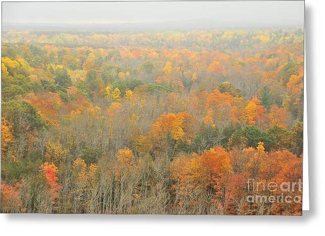 Mist Comes To The High Rollaways Greeting Card by Terri Gostola