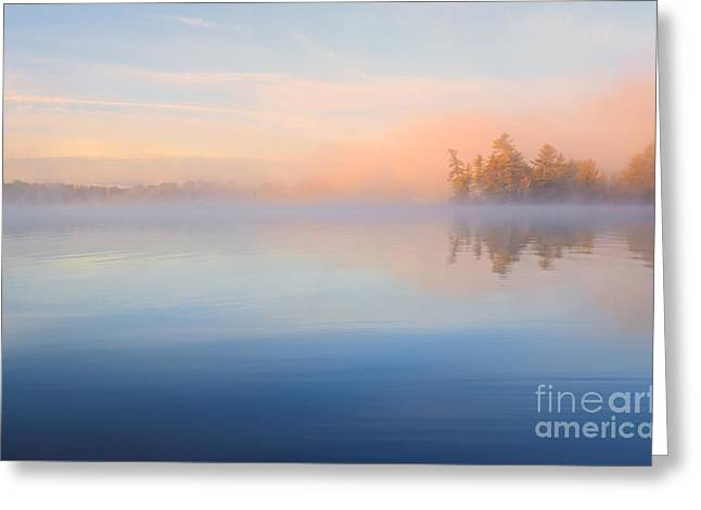 Mist At Dawn Greeting Card by Charline Xia