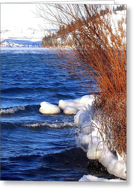 Willow Lake Greeting Cards - Mist On Kalamalka Greeting Card by Will Borden