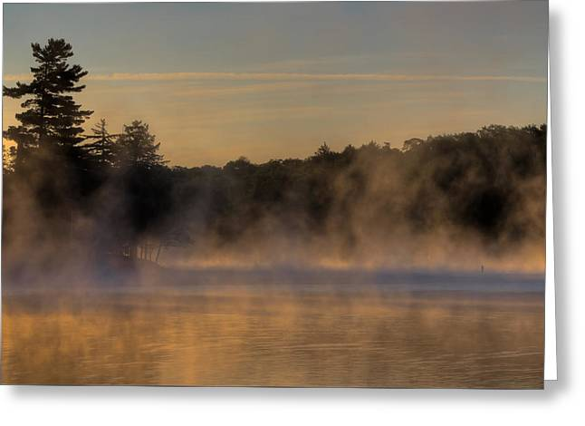 Mist On Lake Greeting Cards - Mist on Old Forge Pond Greeting Card by David Patterson