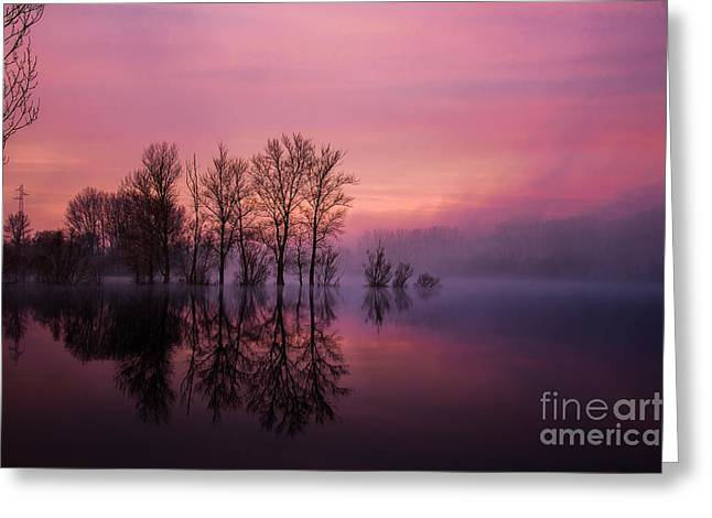Beaujolais Greeting Cards - Mist on sunrise time Greeting Card by Gael Fontaine