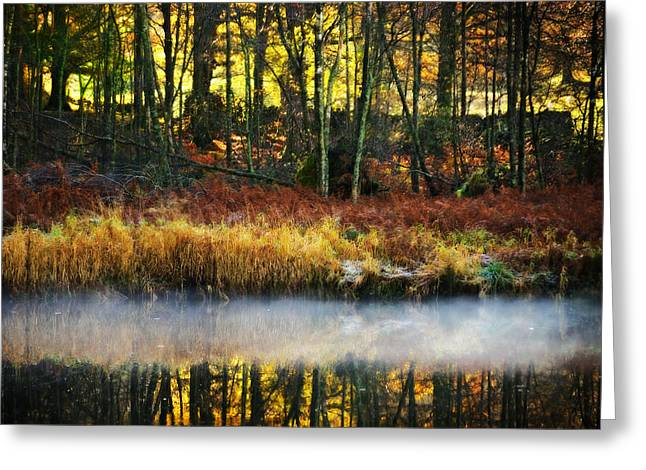 Color Colorful Greeting Cards - Mist On The Water Greeting Card by Meirion Matthias