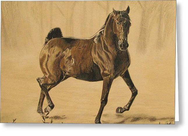 Melita Safran Greeting Cards - Mistical horse Greeting Card by Melita Safran