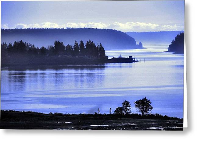 Misty Blue Steilacoom Greeting Card by Chris Anderson