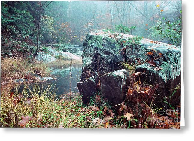 Stafford Greeting Cards - Misty Chopawamsic Creek Autumn Day Greeting Card by Thomas R Fletcher