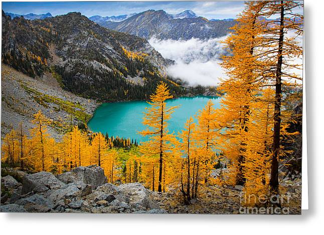 Conifer Tree Greeting Cards - Misty Colchuck Lake Greeting Card by Inge Johnsson