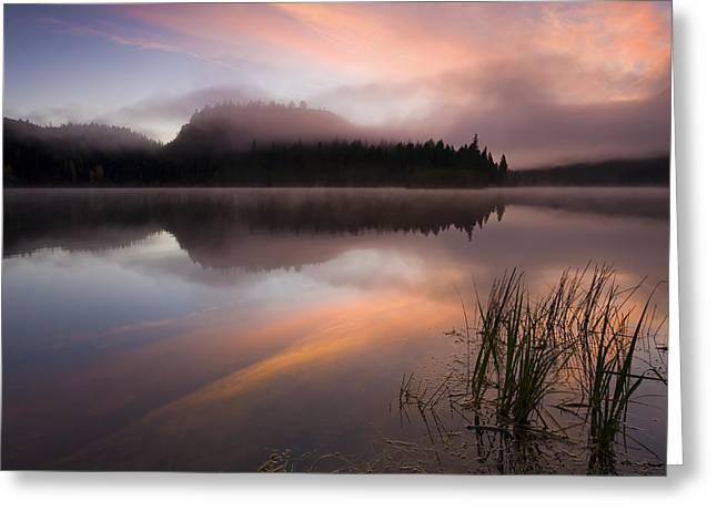 Fog Rising Greeting Cards - Misty Dawn Greeting Card by Mike  Dawson