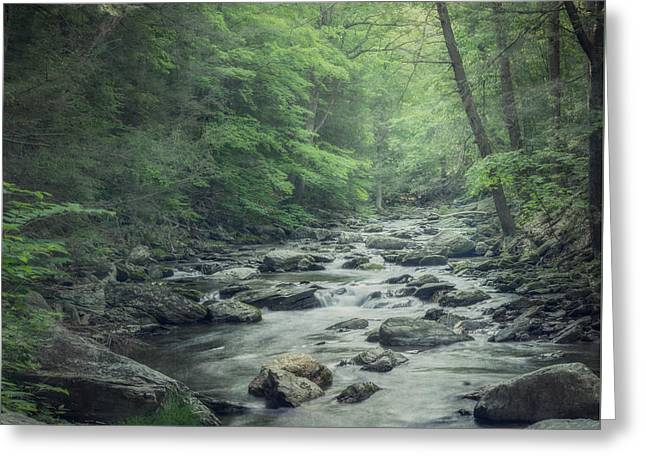 Surreal Landscape Greeting Cards - Misty Forest Stream Greeting Card by Suzanne Harford
