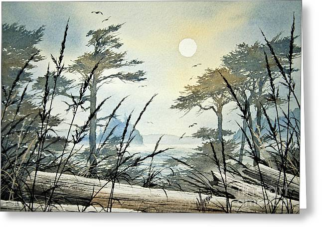 Landscape Framed Prints Greeting Cards - Misty Island Dawn Greeting Card by James Williamson