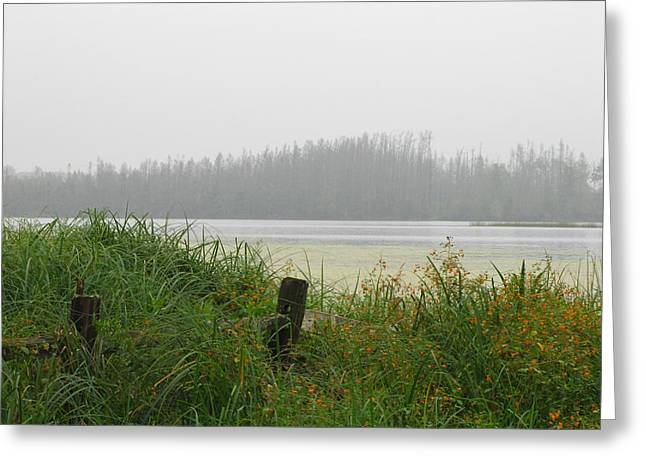 Misty Lake Greeting Card by Marilyn Smith