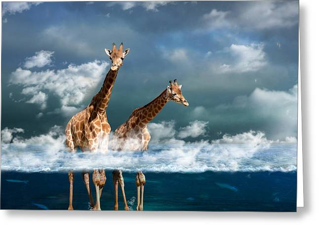 Surrealist Greeting Cards - Misty Greeting Card by Martine Roch
