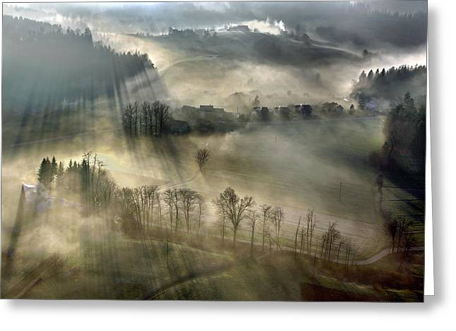 Morning Greeting Cards - Misty Greeting Card by Matjaz Cater