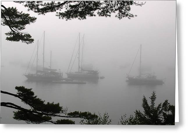 Schooner Greeting Cards - Misty Morning at Northeast Harbor Greeting Card by Juergen Roth