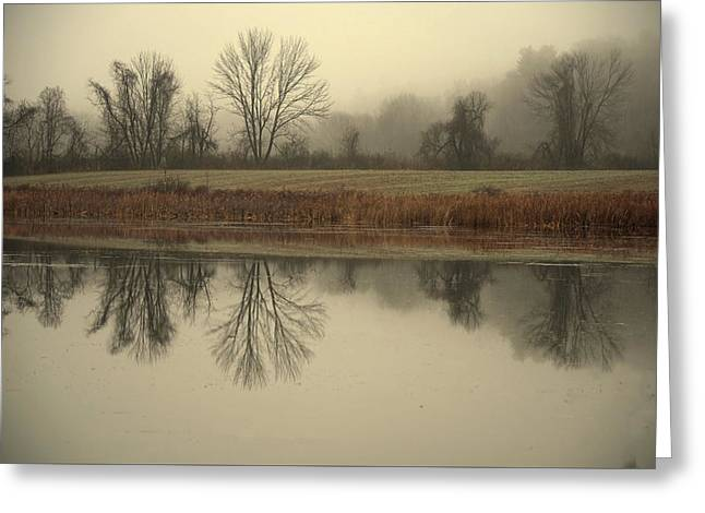 Nikkor Greeting Cards - Misty Morning Greeting Card by Deborah Bifulco