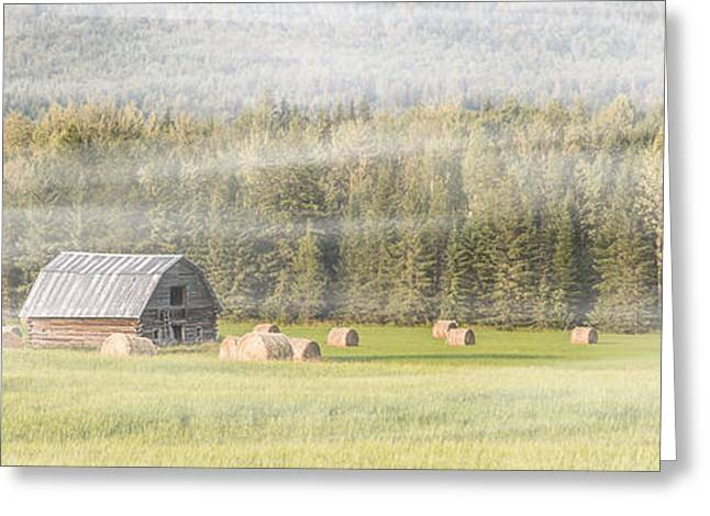 Sheds Greeting Cards - Misty Morning Haybales Greeting Card by Patti Deters
