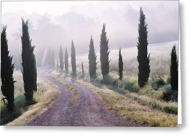 Road Travel Greeting Cards - Misty Morning in Tuscany Greeting Card by Marion McCristall