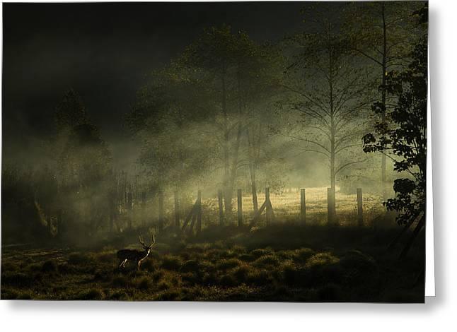 Misty Morning Greeting Card by Nunu Rizani