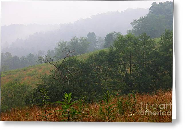 Mountain Valley Greeting Cards - Misty Morning on the Farm Greeting Card by Thomas R Fletcher