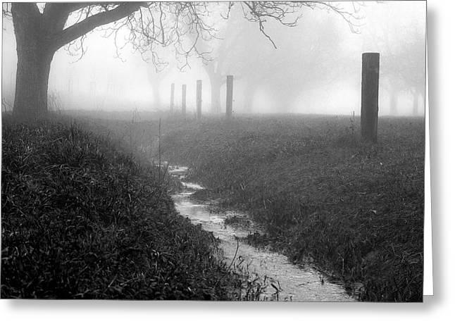 Stream Pyrography Greeting Cards - Misty Stream Greeting Card by John Palmer