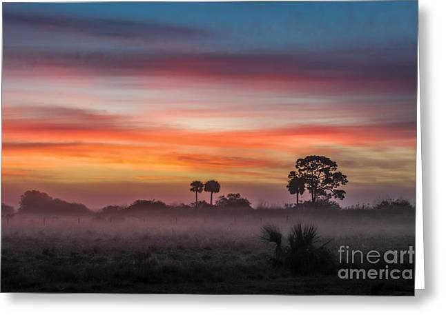 Saw Greeting Cards - Misty Sunrise Greeting Card by Liesl Walsh