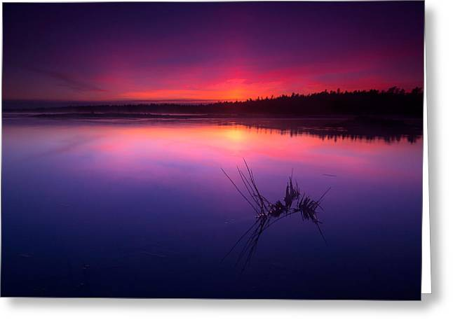 Foggy Beach Greeting Cards - Misty sunset at Singing Sands Beach Greeting Card by Cale Best