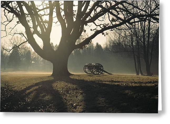 Civil War .tree Greeting Cards - Misty View Of Canon And Tree Greeting Card by Sam Abell
