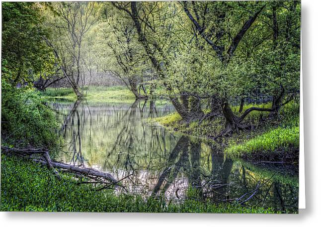 Willow Lake Greeting Cards - Misty Waters Greeting Card by Debra and Dave Vanderlaan