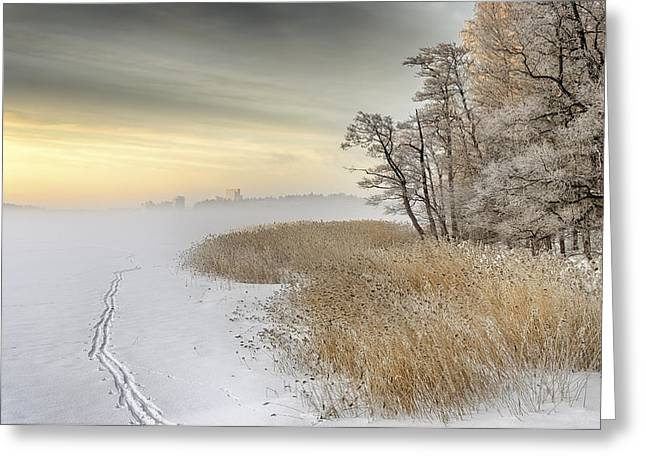 Frost Greeting Cards - Misty Winter Morning Greeting Card by Keijo Savolainen