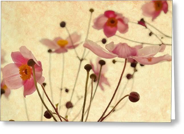 Modern Vintage Blossoms Greeting Card by Georgiana Romanovna