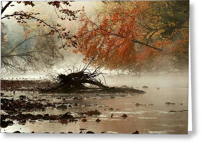 Ohio Red Greeting Cards - Mohican in Autumn Greeting Card by Amanda Kiplinger