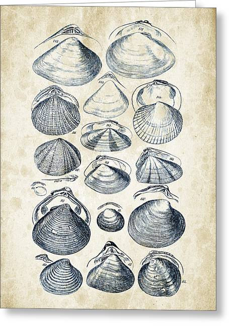 Invertebrate Greeting Cards - Mollusks - 1842 - 05 Greeting Card by Aged Pixel