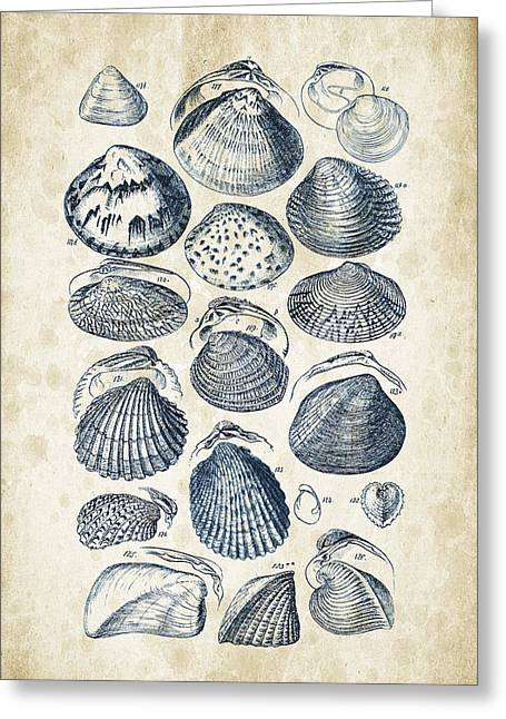 Invertebrate Greeting Cards - Mollusks - 1842 - 06 Greeting Card by Aged Pixel
