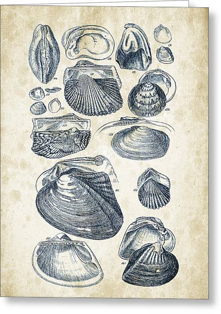 Invertebrate Greeting Cards - Mollusks - 1842 - 07 Greeting Card by Aged Pixel