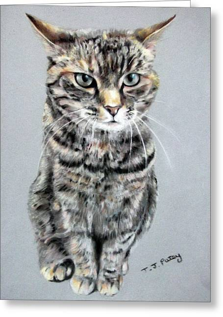 Molly 2 Greeting Card by Tanya Patey