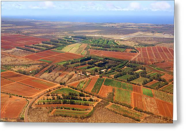 Red Dirt Greeting Cards - Molokai Cropland Greeting Card by Kevin Smith