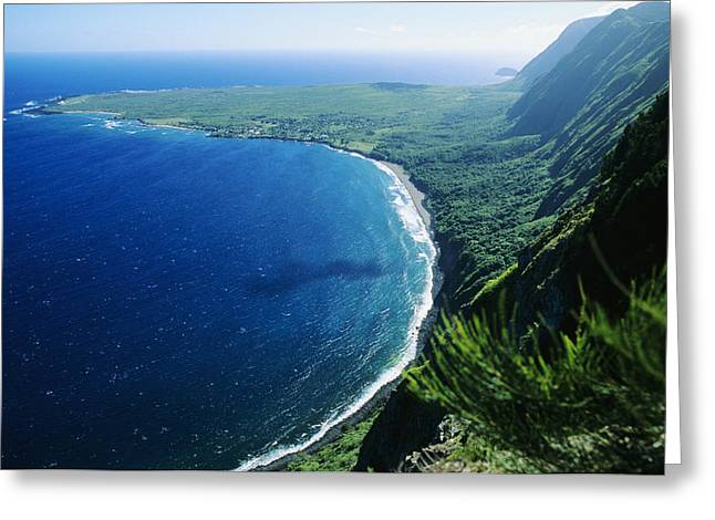 Tropical Vegetation Greeting Cards - Molokai, View Greeting Card by Ali ONeal - Printscapes