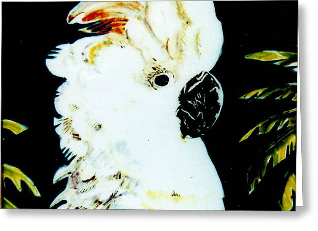 Best Sellers -  - Ceramic Ceramics Greeting Cards - Moluccan Cockatoo Greeting Card by Dy Witt