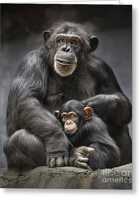 Mom And Baby Greeting Card by Jamie Pham