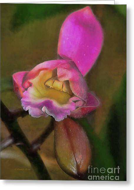 Mom's Orchid Greeting Card by Deborah Benoit