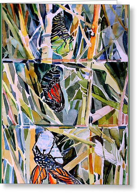 Emergence Greeting Cards - Monarch Butterfly Life Cycle Greeting Card by Mindy Newman