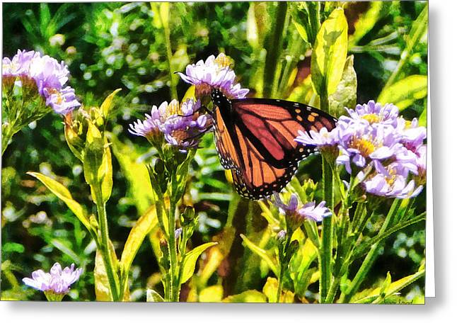Florals Greeting Cards - Monarch Butterfly on Purple Wildflower Greeting Card by Susan Savad