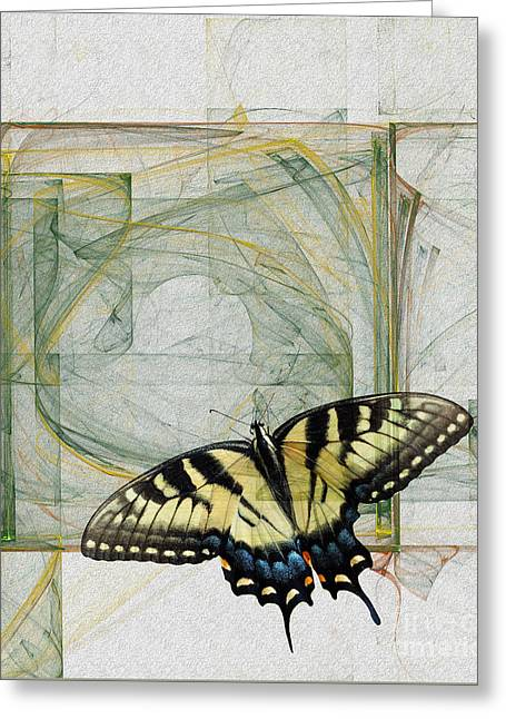 Abstract Digital Photographs Greeting Cards - Monarch Greeting Card by Martina Parsley