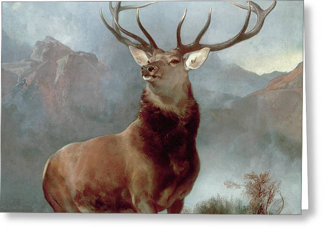 Beast Greeting Cards - Monarch of the Glen Greeting Card by Sir Edwin Landseer