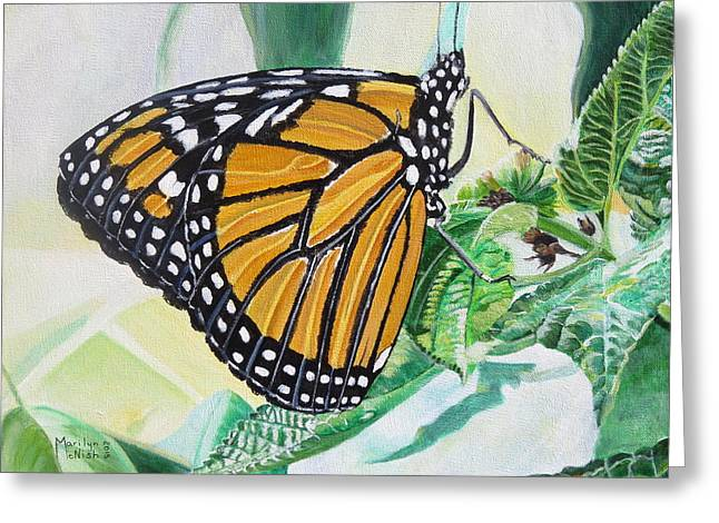 Reserve Greeting Cards - Monarch Portrait Greeting Card by Marilyn  McNish