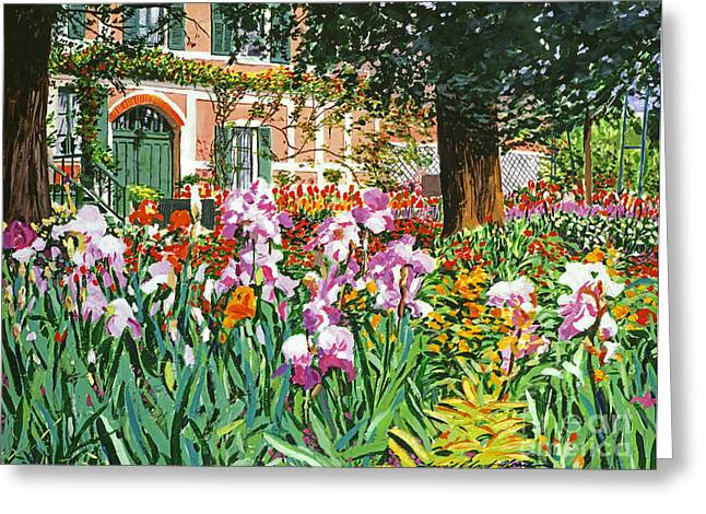 Europe Paintings Greeting Cards - Monets Irises Greeting Card by David Lloyd Glover